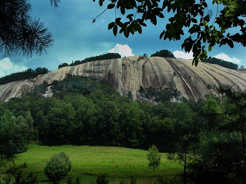 Stone Mountain ascending from behind trees